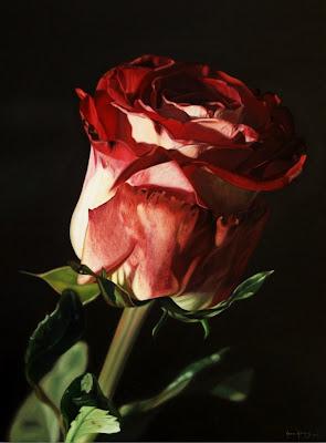 flores-al-oleo-cuadros