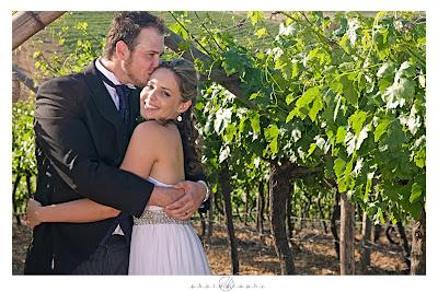 DK Photography K33 Kirsten & Stephen's Wedding in Riebeek Kasteel  Cape Town Wedding photographer
