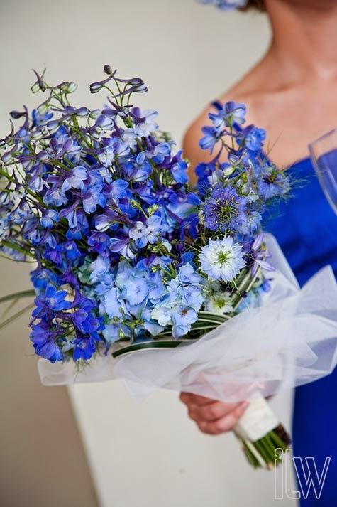 Wedding delphinium flower bouquet http refreshrose for Flower arrangements with delphinium