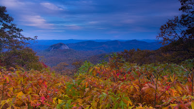 Asheville Travel Blog: Asheville's 2013 Fall Color Forecast