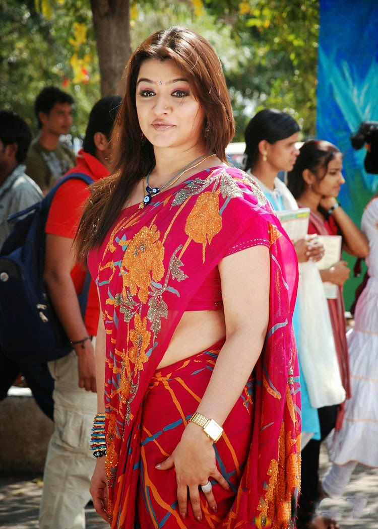 Agarwal Hot Saree Side View Pics Aarthi S