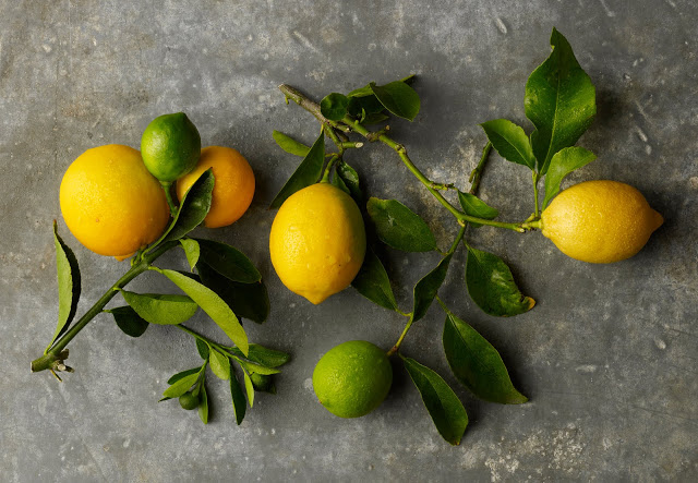 (c) Beth Galton http://bethgalton.blogspot.com/2010/06/lemons-and-limes.html