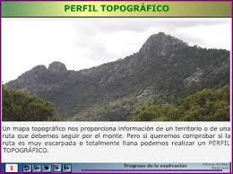 http://recursostic.educacion.es/secundaria/edad/3esobiologia/3quincena1/imagenes1/perfil.swf