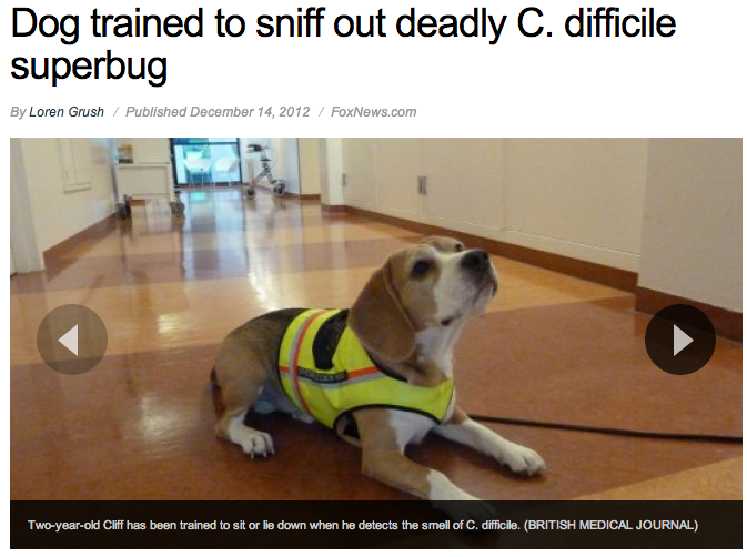 CDiff Smell? - General Nursing - allnurses