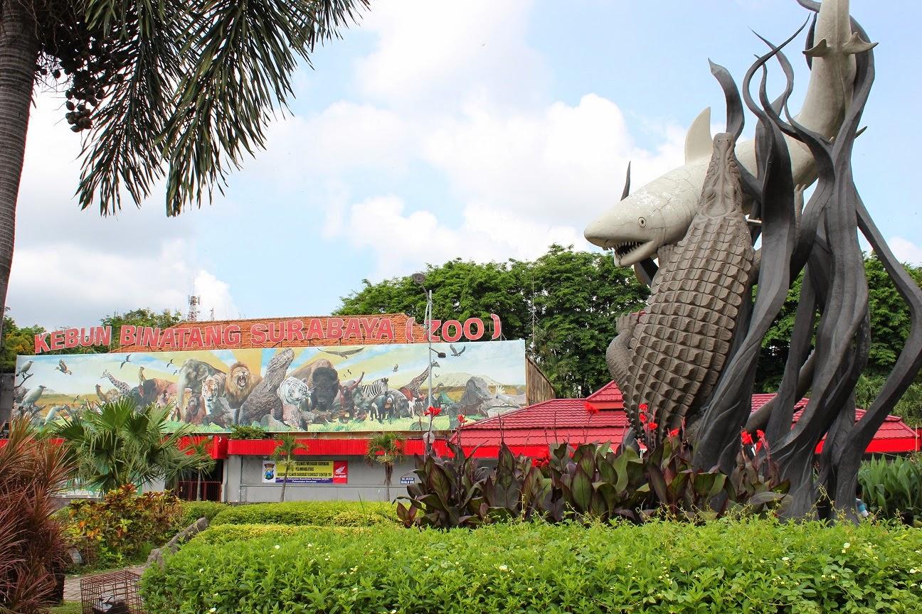 Kebun Binatang Surabaya KBS Suro Boyo