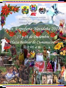 Expoferia Navideña 2011
