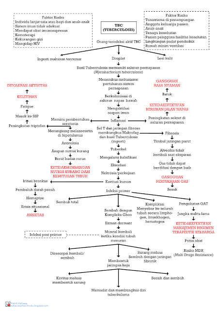 Perjalanan Penyakit TBC hingga diagnosis Keperawatan