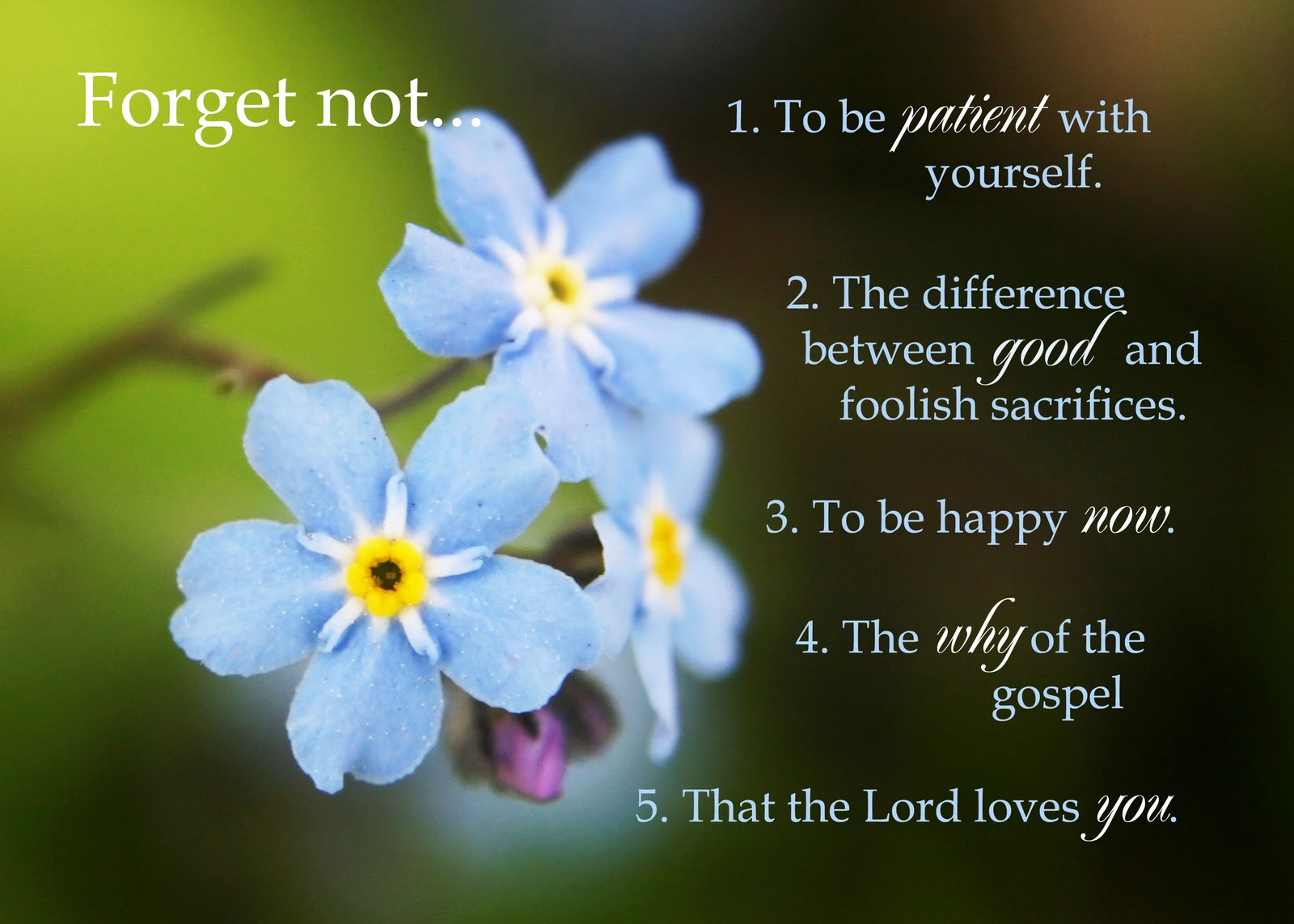 LDS Forget Me Not