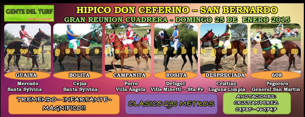 San Bernardo Mas Clasicos 25-01