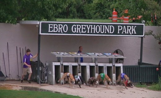 GreyhoundNews: Greyhound Racing Today - Monday May 4, 2015