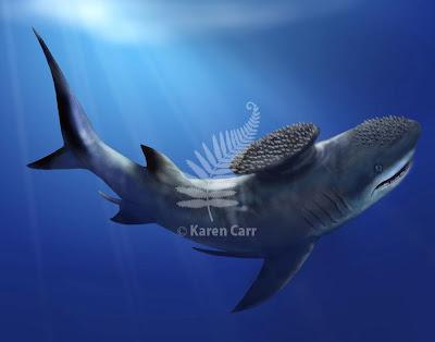 tiburones del cretaceo Stethacanthus