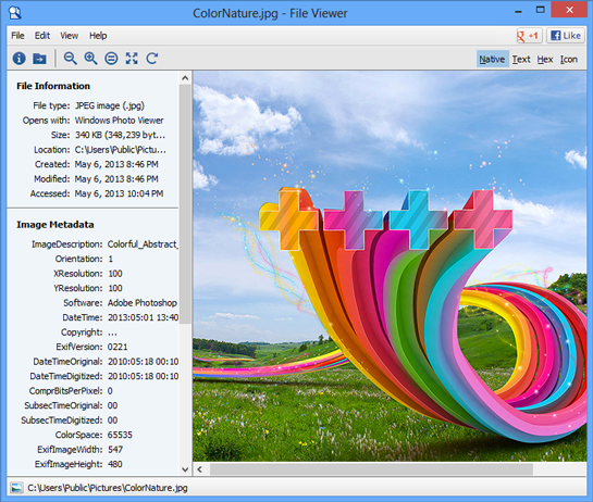 Windows File Viewer