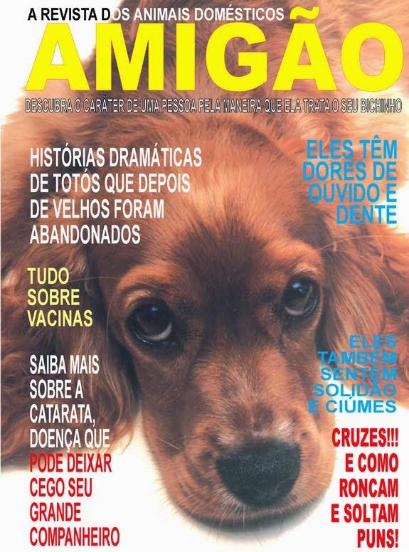 Amigo Cão..