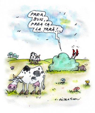 phoca thumb l 66vb  Caricaturi de caricaturi. By Costel Patrascan