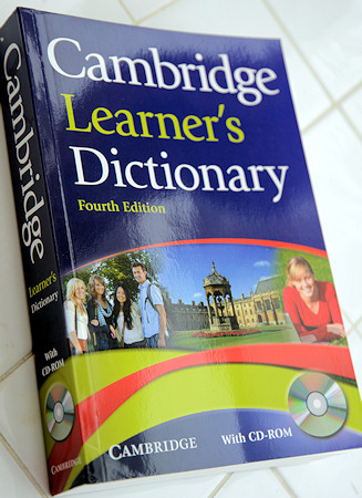 the cambridge dictionary of english grammar pdf