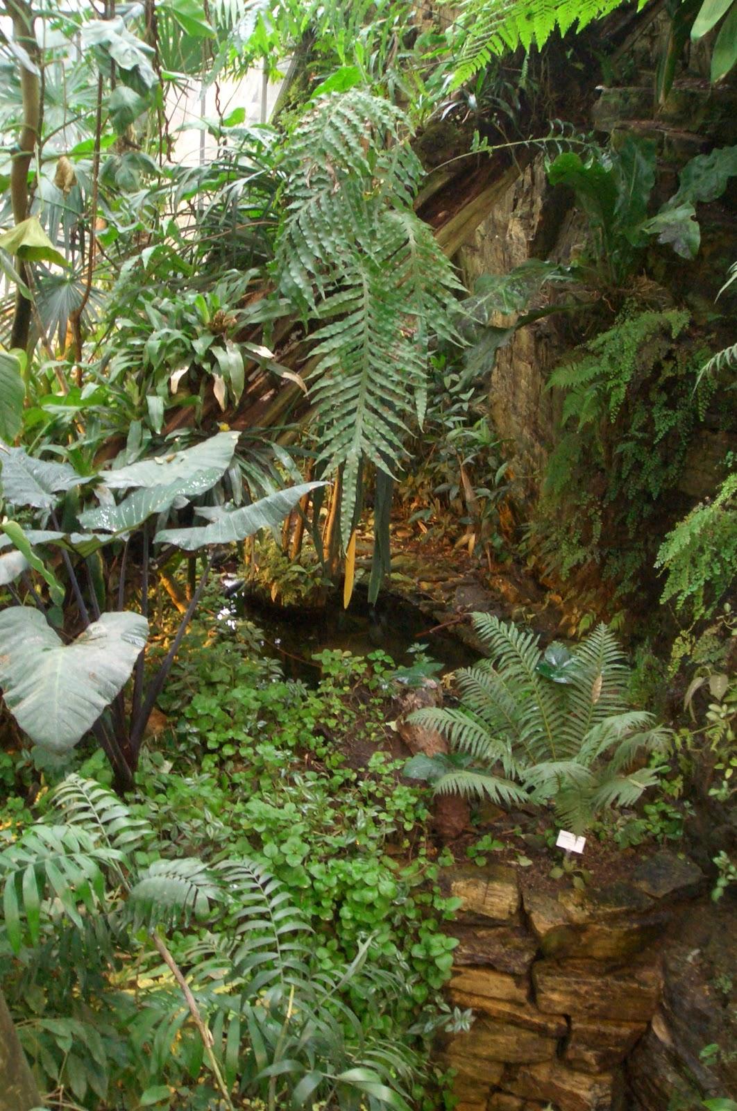 Botaniquarium Blog: Botanischer Garten Osnabrück