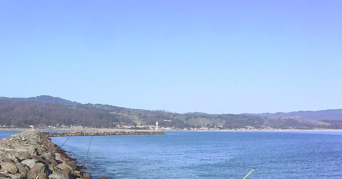 Hunting and fishing california pillar point harbor in for Half moon bay pier fishing