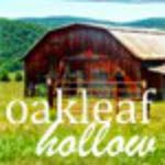 Oak Leaf Hollow