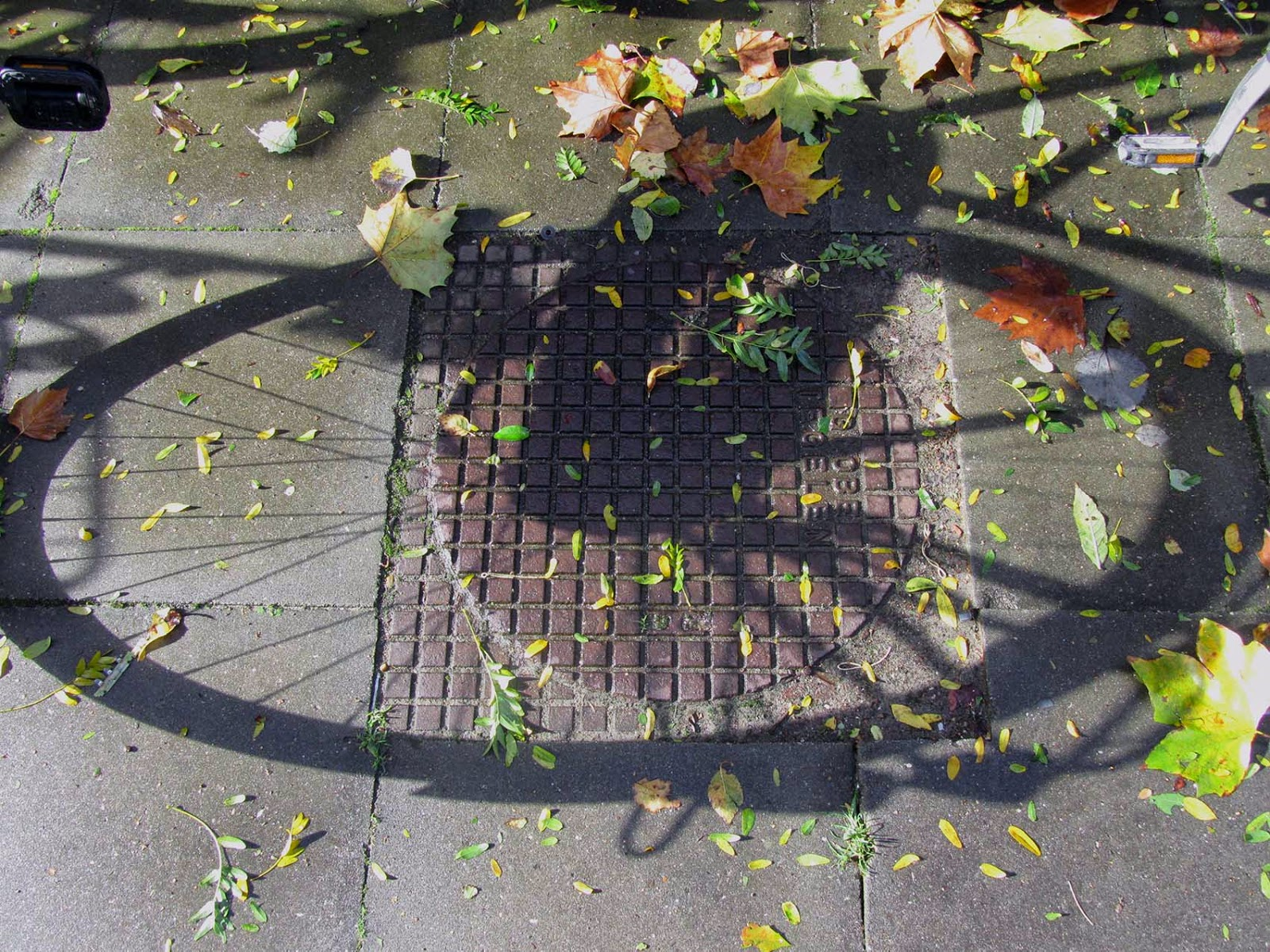 shadow of a bicycle wheel