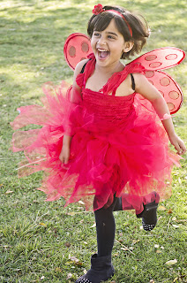 ladybug diy costume