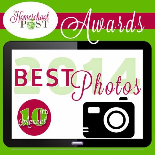 I'm honored to be nominated in 3 categories at the 2014 Homeschool Post Blog Awards!!