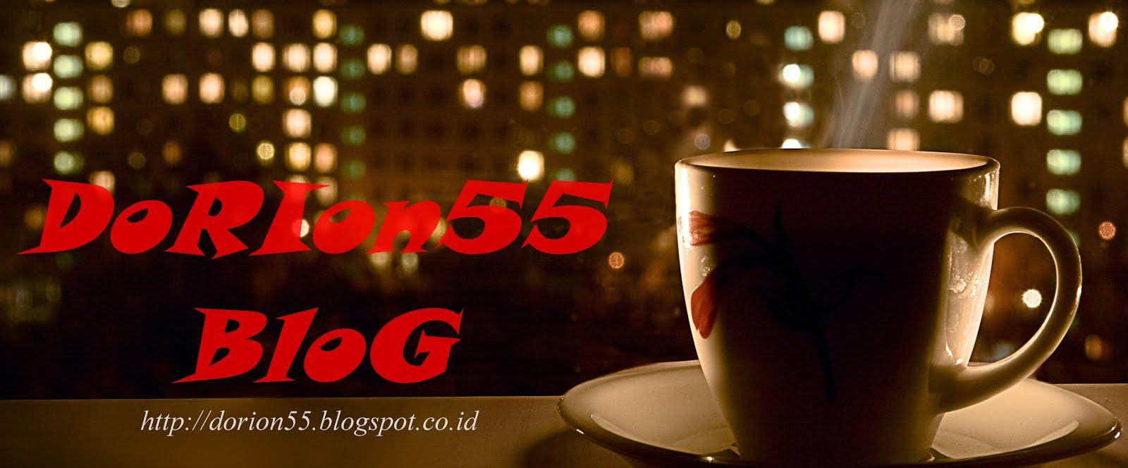 DoRIon55 BloG