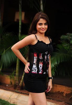 sheena shahabdi from nandeeswarudu hot images