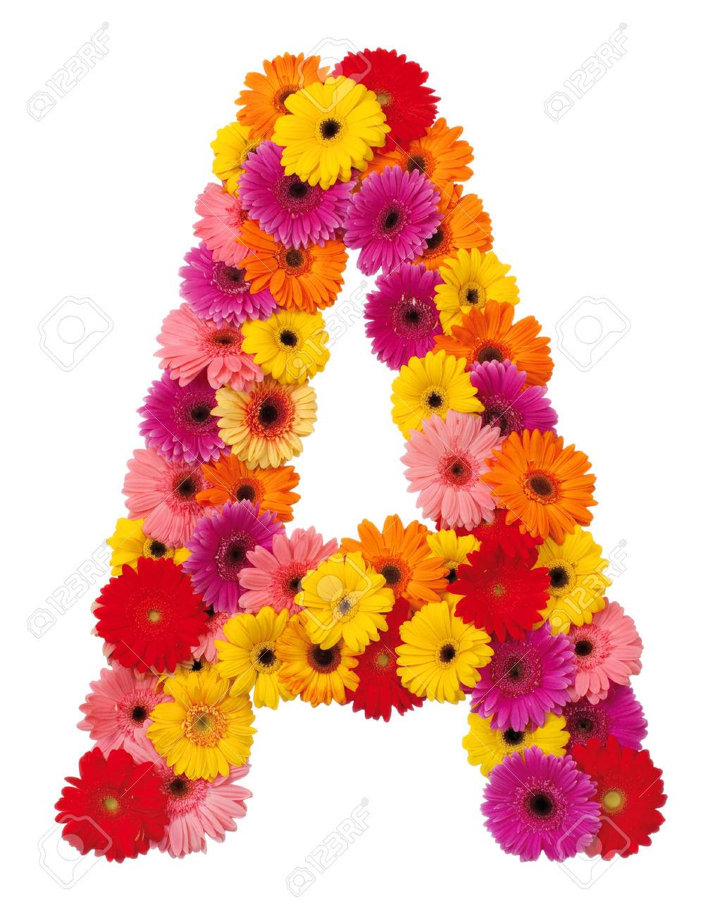 Все цветы на букву л с