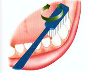 como cepillar los dientes