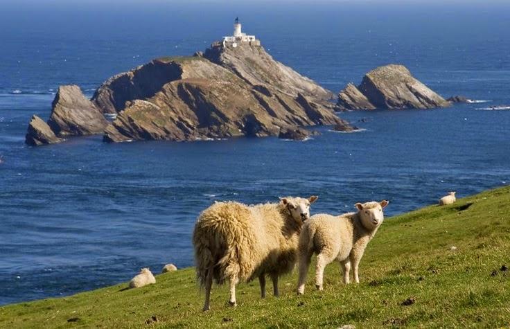 Irina: Fair Isle (Shetland Islands - Scotland) jacquard knitting ...
