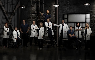 grey's anatomy cast season 9 promotional photo