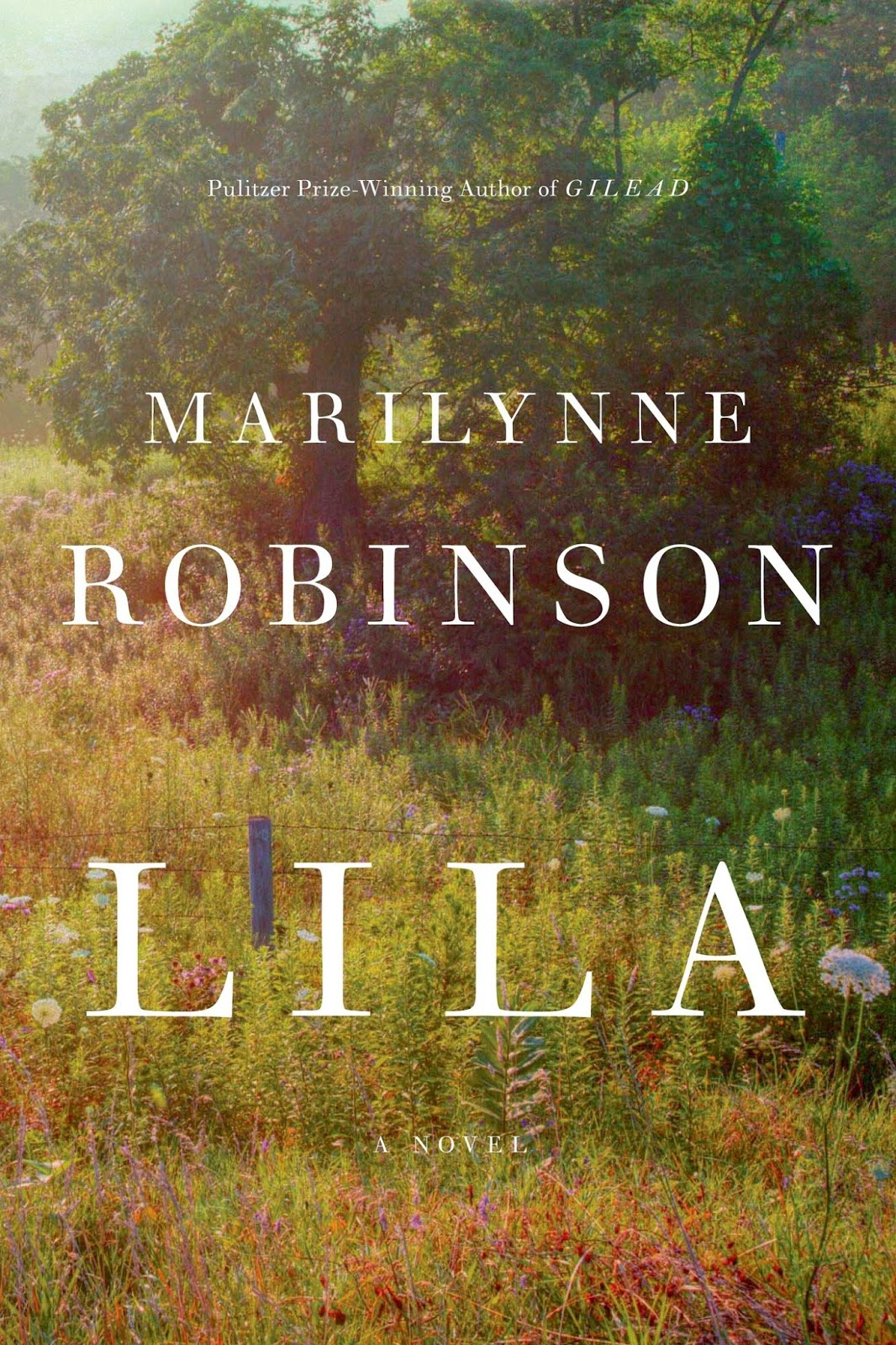 http://discover.halifaxpubliclibraries.ca/?q=title:lila