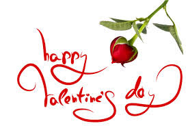 Valentine's Day 2016 Pictures