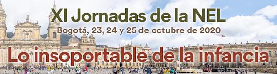 JORNADAS DE LA NEL Bogota 2020