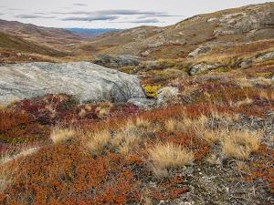 Gorgeous autumn colours in the mountains