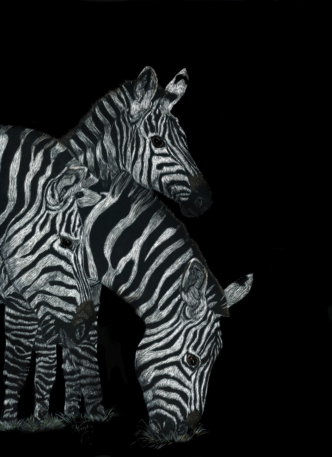 Kay Murphys Studio Kay Murphy Wallaceartist Zebras