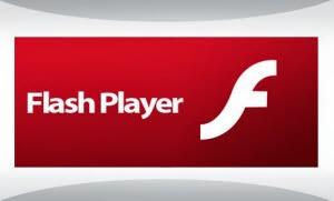 Flash Player Plugin