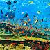 Wisata Bawah Laut Yang Eksotis