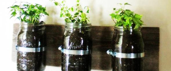 plantas jardim pequeno:Coisas Que Eu Gosto: Como organizar plantas em espaços pequenos