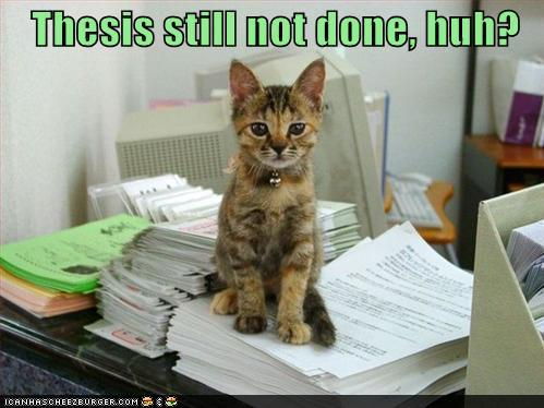 funny quotes for thesis