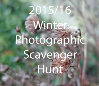 Winter Photo Hunt