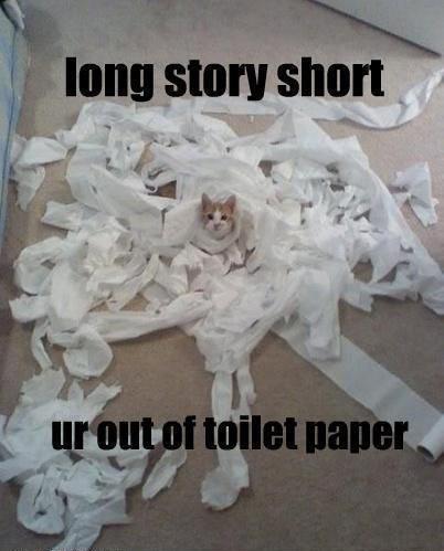 Funny Cat - Long Story Short
