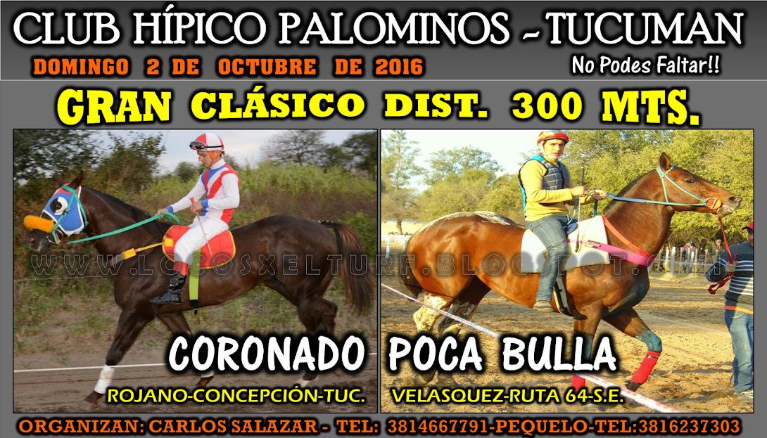 02-10-16-HIP. PALOMINOS-CLAS.3