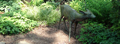 """Deer"" at the Atlanta Botanical Garden"
