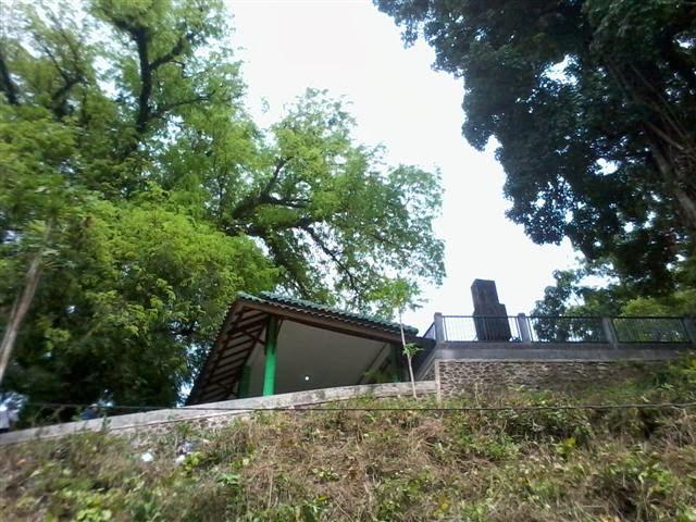 Bukit tempat dimakamkannya Mbah Jabbar.