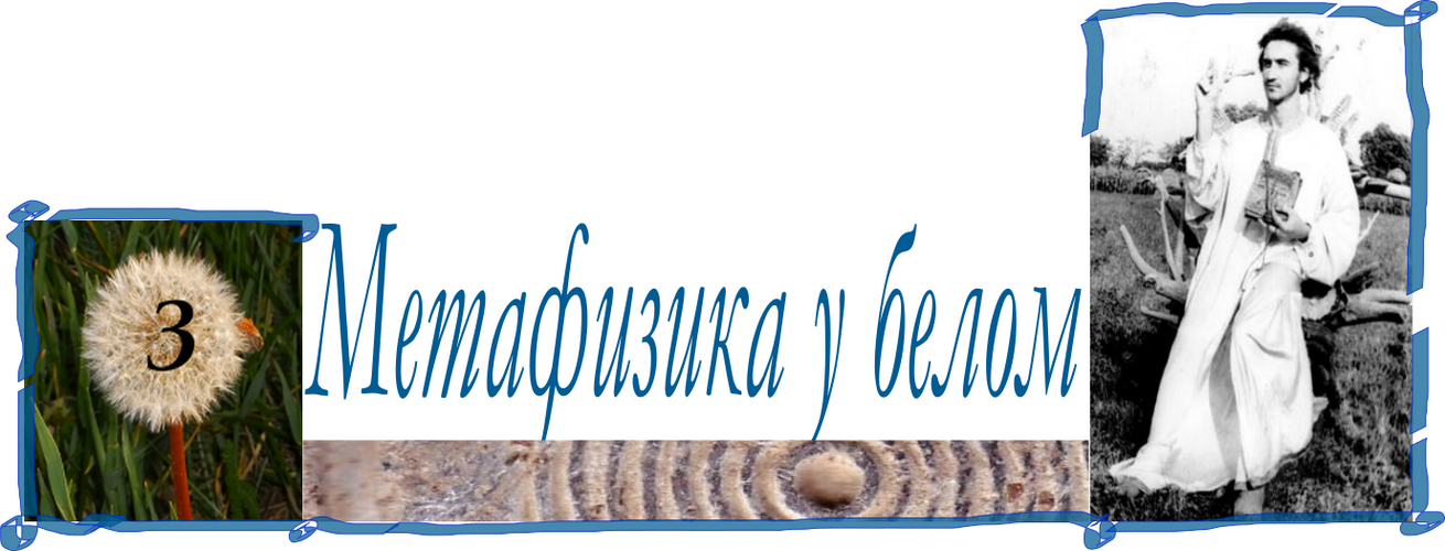 МЕТАФИЗИКА У БЕЛОМ