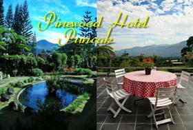 Hotel Pinewood Puncak