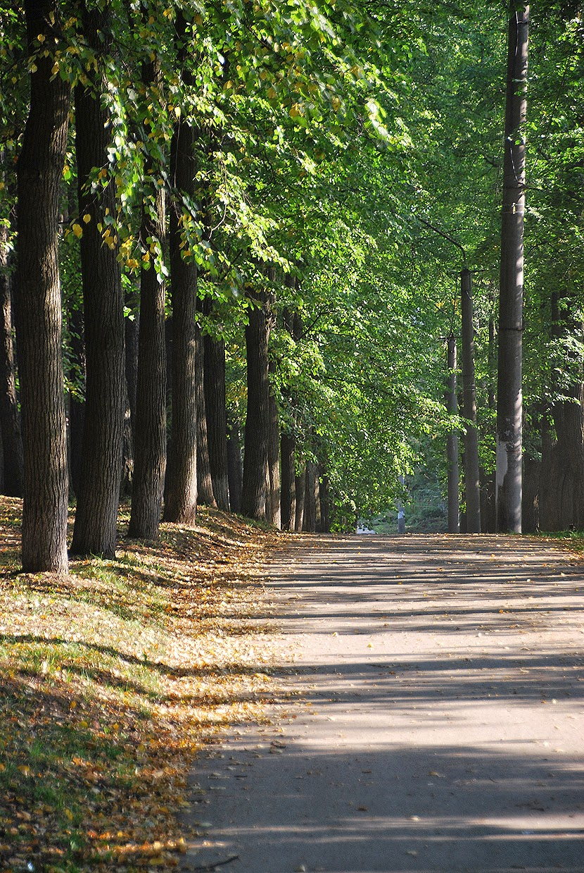 лысьвенский парк