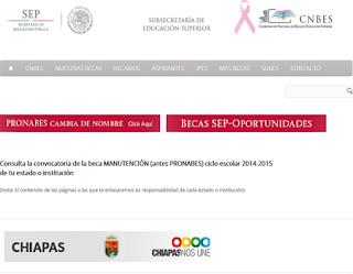 Registro solicitud Becas PRONABES en el Subes PRONABES 2013 2014 Programa de Becas para Educación Superior