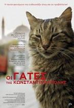 Σινεμά: Οι Γάτες της Κωνσταντινούπολης